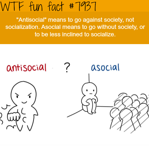 Antisocial - WTF fun facts