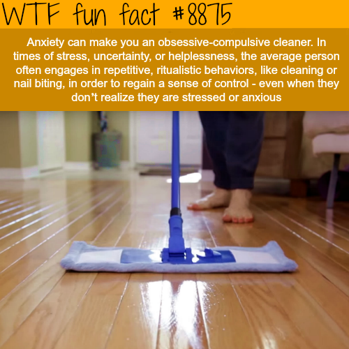 Anxiety can make you an obsessive-compulsive cleaner - WTF fun facts