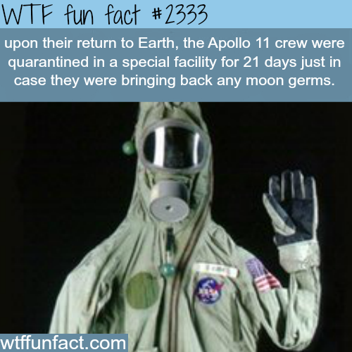 Apollo 11 crew facts - WTF fun facts