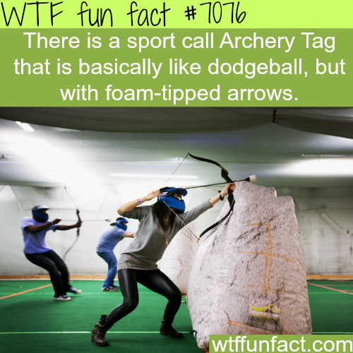Archery Tag - WTF fun facts