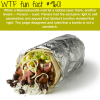 are burritos sandwiches wtf fun fact