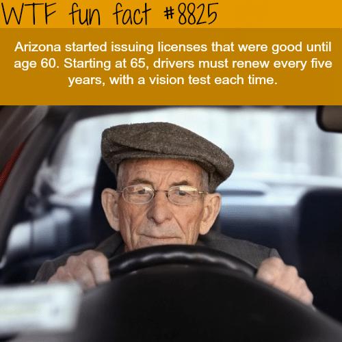 Arizona new laws - WTF fun facts