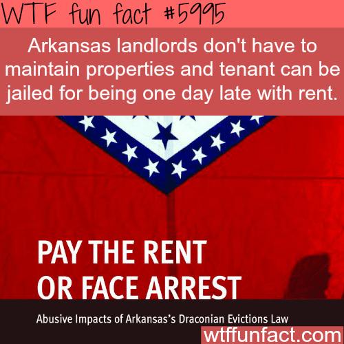 Arkansas tenant laws - WTF fun facts