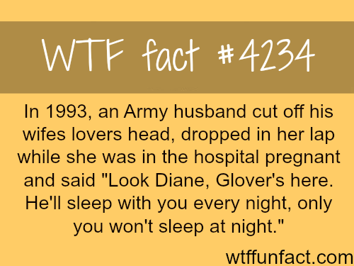 Army sergeant cuts the head his wifes lovers head -  WTF fun facts