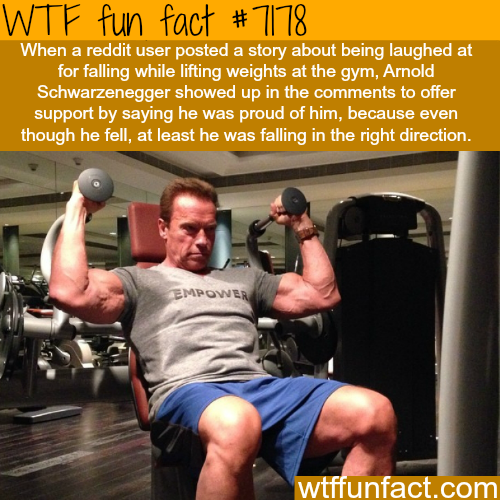 Arnold Schwarzenegger offered support for a man who fell at gym - WTF Fun Fact