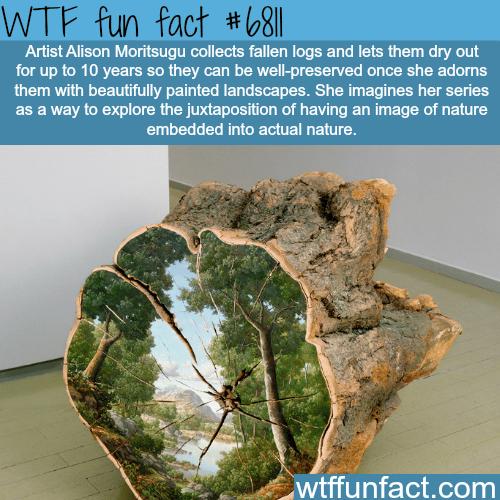Art by Alison Moritsugu - WTF fun fact