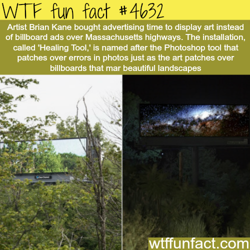 Artist buys advertising time to display art instead of ads - WTF fun facts