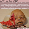artist katherine dey wtf fun fact