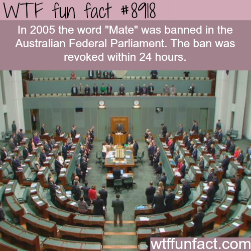 Australian Federal Parliament wanted to ban the word mate - WTF fun facts