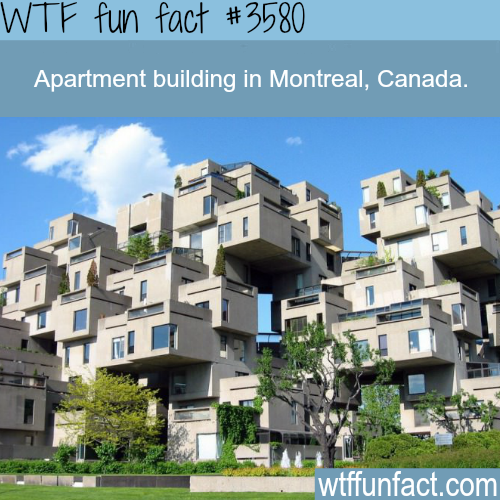 Awesome apartment building in Montreal -  WTF fun facts