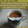 awesome cups to protect your mustache