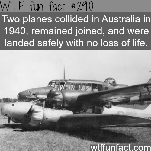 Awesome plane crash -  WTF fun facts