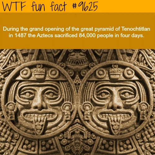 Aztecs - WTF fun fact