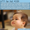 babies cry with accent wtf fun facts