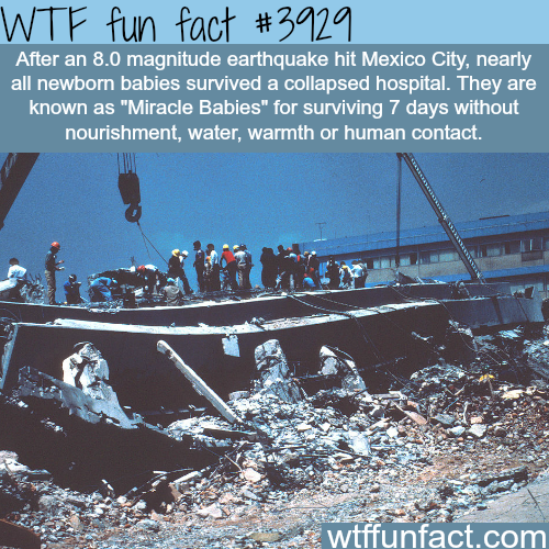 Babies survive a collapsed hospital for 7 days without food - WTF fun facts