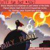 batman v superman wtf fun facts