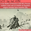 battle of pelusium wtf fun facts