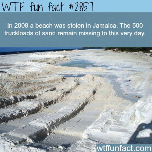 Beach theft in Jamaica -  WTF fun facts