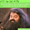 beards facts wtf fun facts