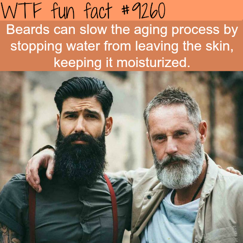 Beards - WTF fun fact