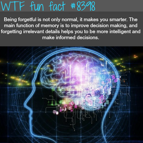 Being forgetful can be a good thing for you - WTF fun facts