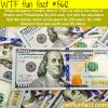 benjamin franklin the money man wtf fun facts