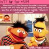 bert and ernie gay