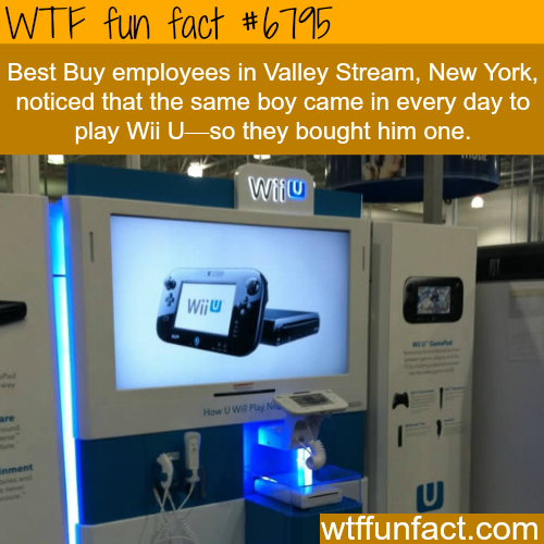 best buy gives kid new Wii u - WTF fun fact