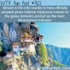 bhutans gross national happiness wtf fun