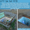 biancoshocks manholes art wtf fun fact