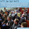 biker gang that sits in courtrooms wtf fun facts