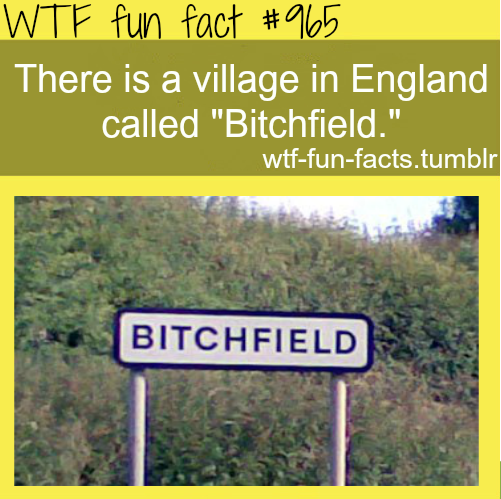 bitchfield - england