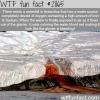 bleeding waterfall in antarctica