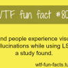 blind people facts