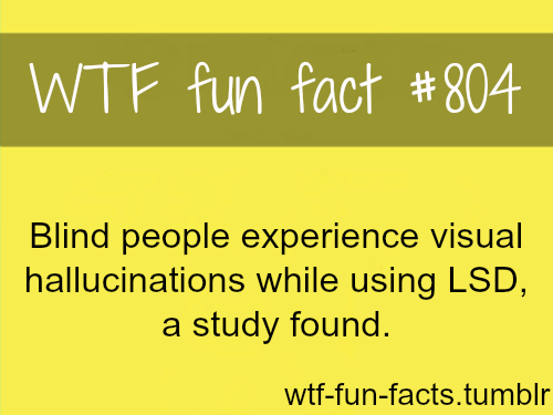 """FOR MORE OF """"wtf fun facts"""" click HERE<—-"""