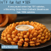 blooming onion wtf fun facts