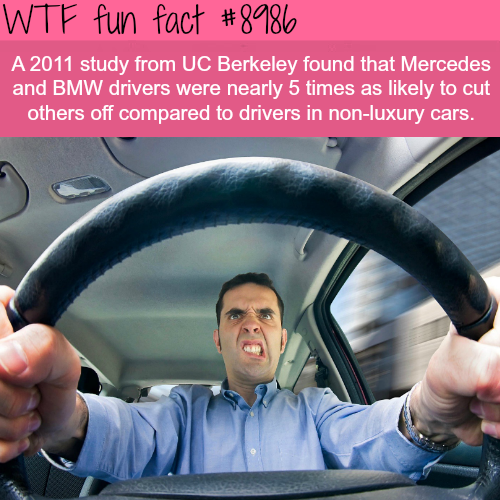 BMW drivers are more likely to cut other drivers - WTF fun facts
