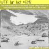 boat found near the most isolated island wtf fun