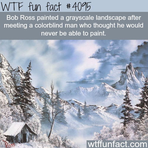 Bob Ross grayscale landscape painting - WTF fun facts