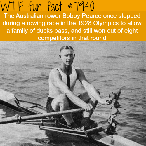 Bobby Pearce - WTF fun facts