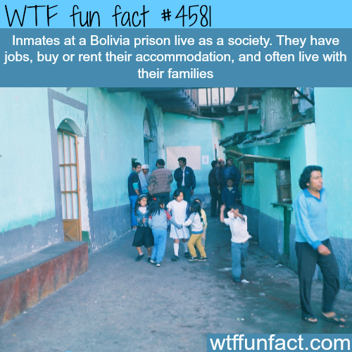 Bolivian prison that let you live with your family -   WTF fun facts
