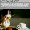 boring activities wtf fun facts