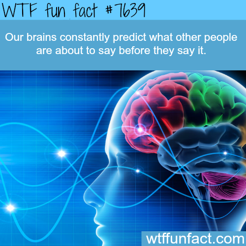 Brain facts - WTF FUN FACTS