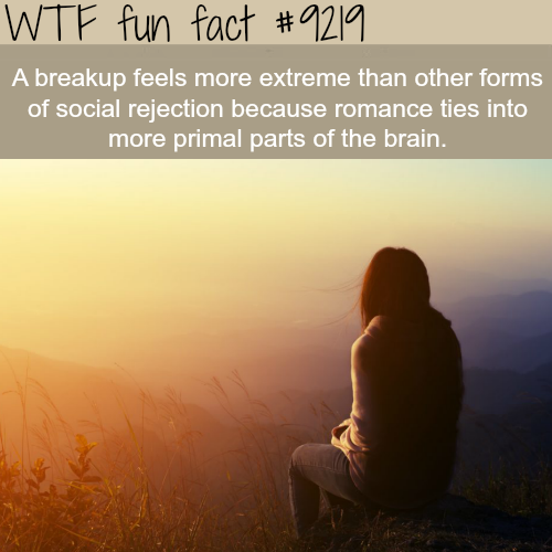 Breakup - WTF Fun Fact
