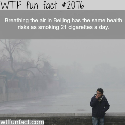 Breathing the air in Beijin