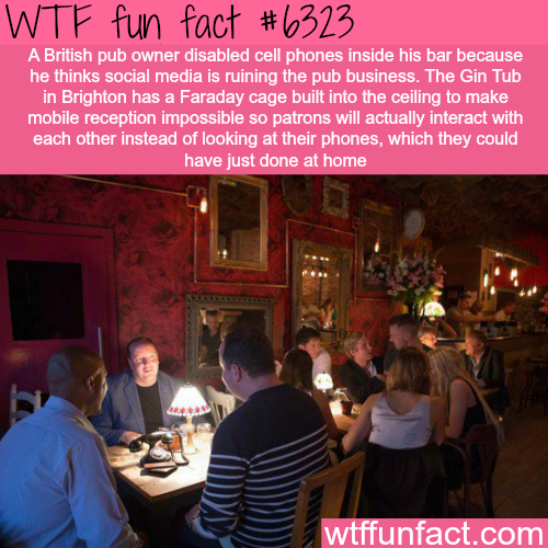 British pub owner disabled cell phones inside his bar - WTF fun facts