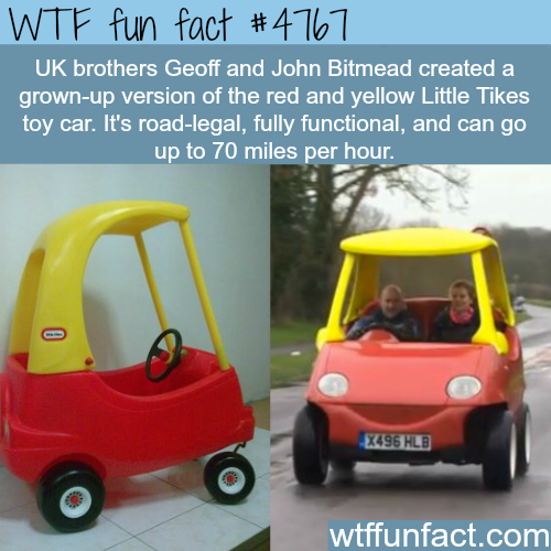 Brothers create a grown-up version of the red and yellow Little Tikes - WTF fun facts