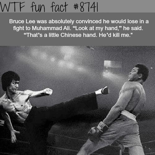 Bruce Lee vs Muhammad Ali - WTF fun facts