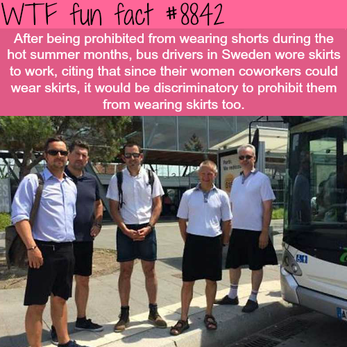 Bus drivers wearing skirts - WTF fun facts