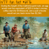 california gold rush wtf fun facts
